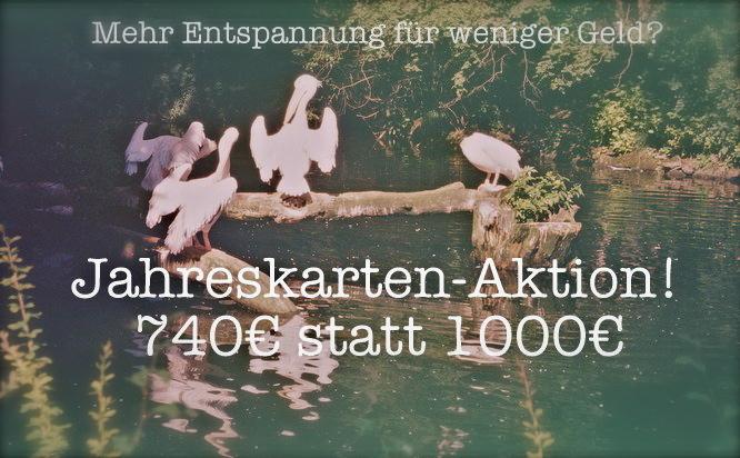 Jahreskarten Aktion MahaShakti München
