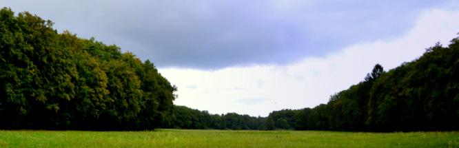 Klapprad & Yogamatte, Radtour, Hessen, Main