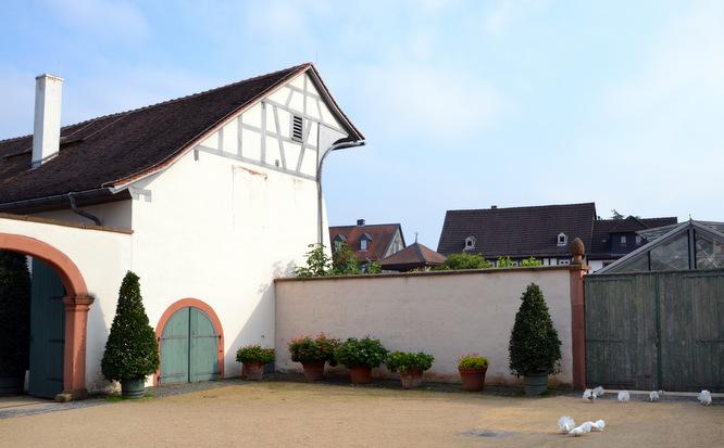 Klapprad & Yogamatte, Radtour, Hessen, Main, Seligenstadt, Kloster, Benediktiner-Abtei