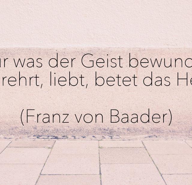 Zitat, Liebe, Herz, Yoga, Franz von Baader